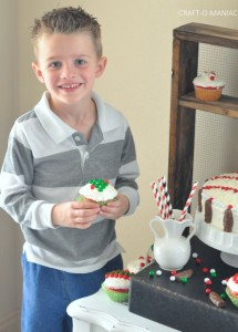 Festive Christmas Cake and Cupcakes