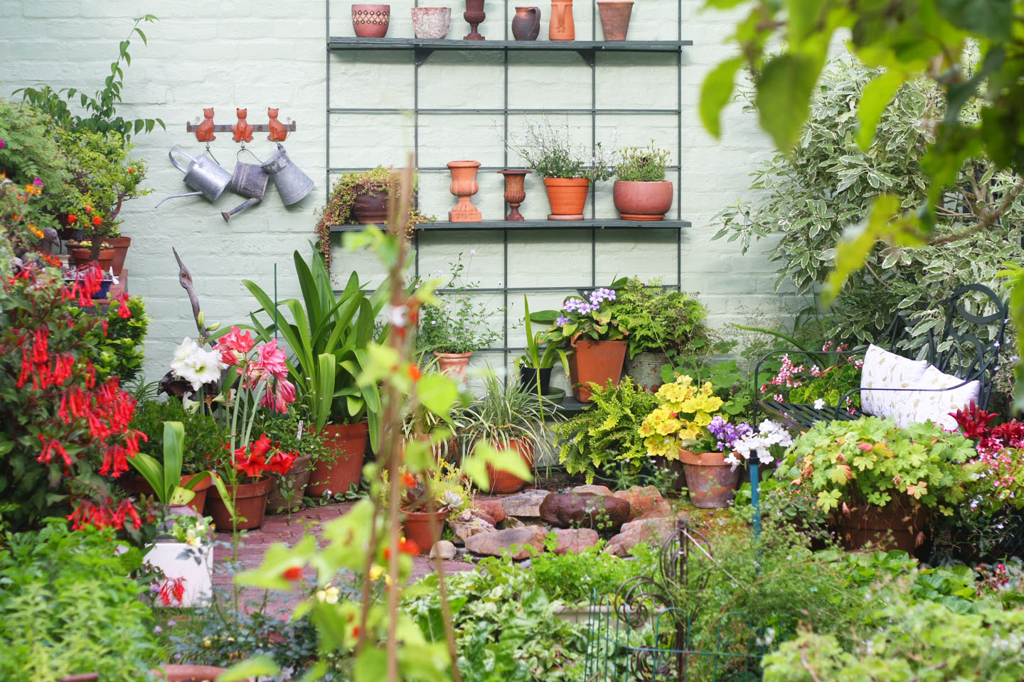 great ways to improve your garden on a budget