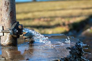 Must Follow Water Removal and Damage Restoration Practices