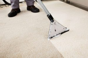 Different Types of Carpet Cleaning Methods Professional Companies Follow