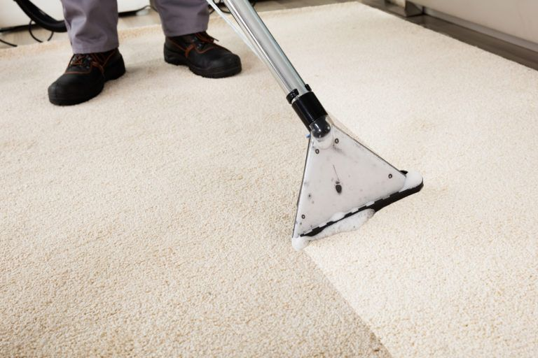 Different Types of Carpet Cleaning Methods Professional Companies Follow -  700 N COTTAGE
