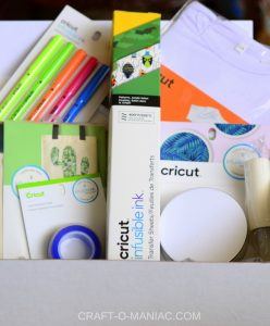 DIY Bug Bag With Cricut Infusible Ink