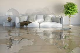 Performing Water Restoration Service In Your Home