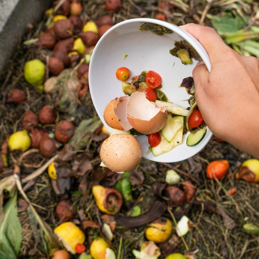 Things To Consider Before Building Your Compost Pile
